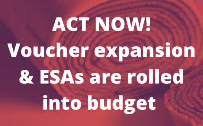 Vic's Statehouse Notes #354 Voucher expansion & ESAs are rolled into budget bill